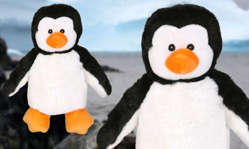 Pingüino calentito