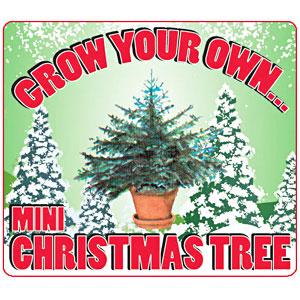 Mini Arbol Navidad