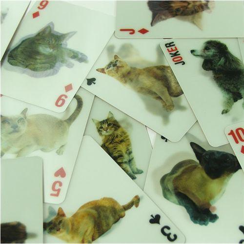 Baraja de Póker con imágenes de gatos en 3D