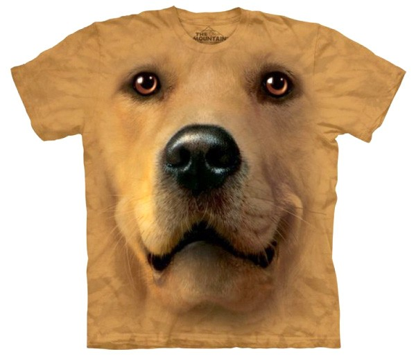 Camiseta  perro golden