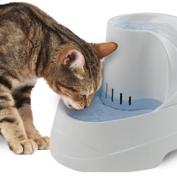 Fuente eléctrica Vega para gatos