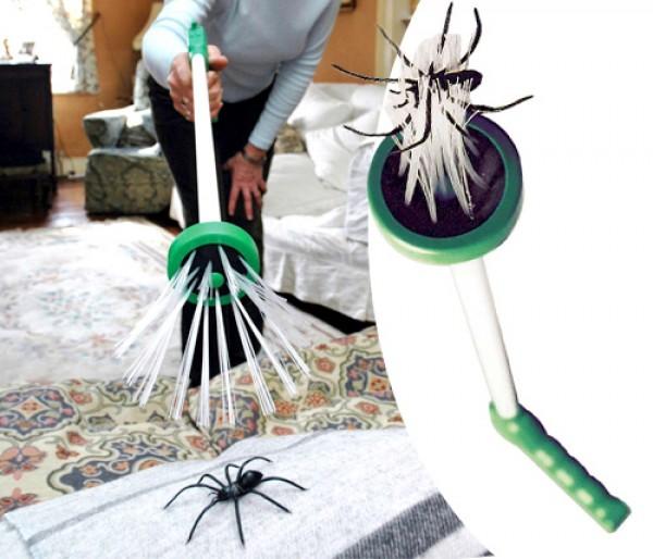 Caza Arañas