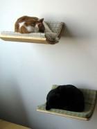 Cama de gatos de diseño