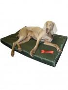Cama Impermeable para Perros
