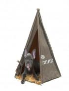 Tienda de campaña para perros